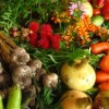 Forget the antioxidant pills; just stick with veggies